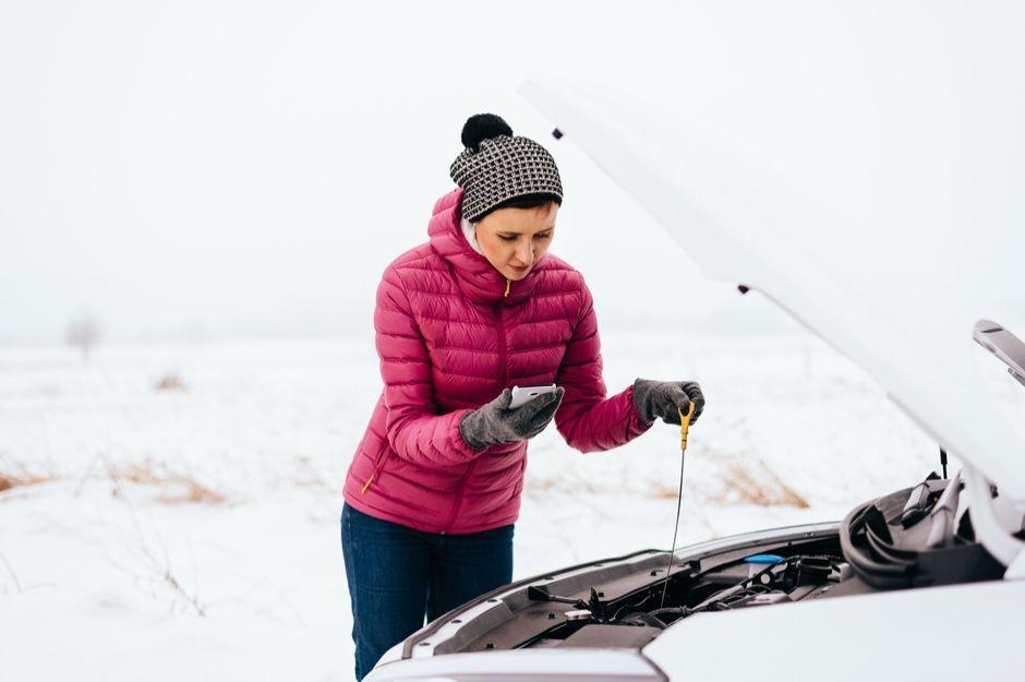 Auto Winter guide